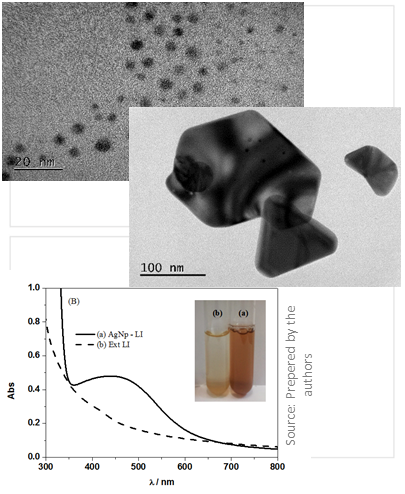 PROCESS TO OBTAIN SILVER NANOPARTICLES, SILVER NANOPARTICLES AND THEIR USES