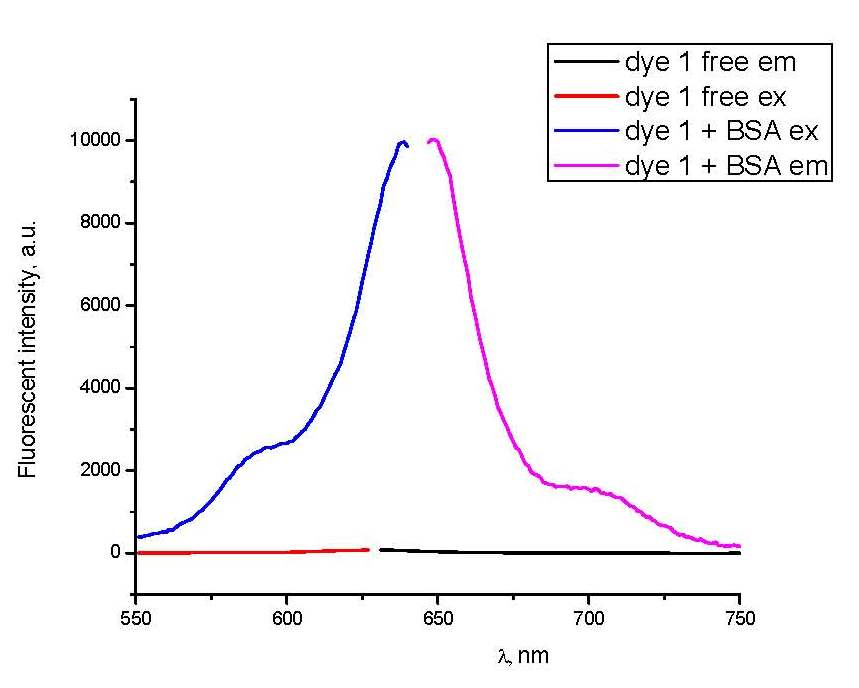New Original Squaraine Dye for protein detection