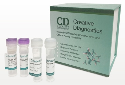 Rapid Test Kits at  Creative Diagnostics