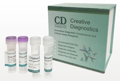 Rapid Test Kits at  Creative Diagnostics