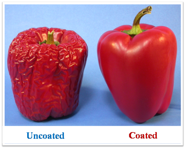 New Formulations and Application Techniques of Protective Coatings for Glossy Fruits and Vegetables