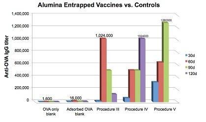 New type of superior vaccines: Antigen entrapment in adjuvant alumina