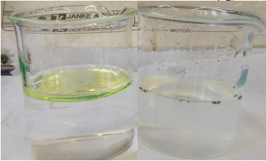 Technology for in Situ Water Purification of LNAPL Pollution
