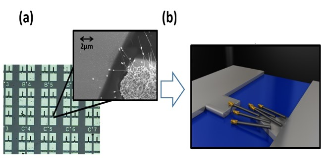 Low-Cost Sensors for Detection of Volatile Compounds for Breath Analysis