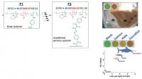 """Detector polimérico para medidas """"in situ"""" y cuantificación de mercurio, cobre y nitritos en agua y productos alimentarios"""