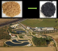 Rice husk as a filter for the removal of contaminants in water