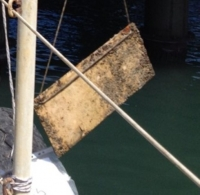 Novel Approach to Marine Antifouling